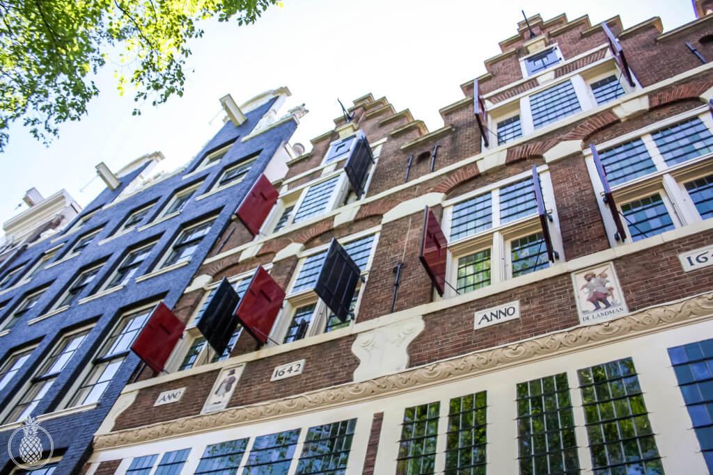 a trip to amsterdam טיול באמסטרדם-5