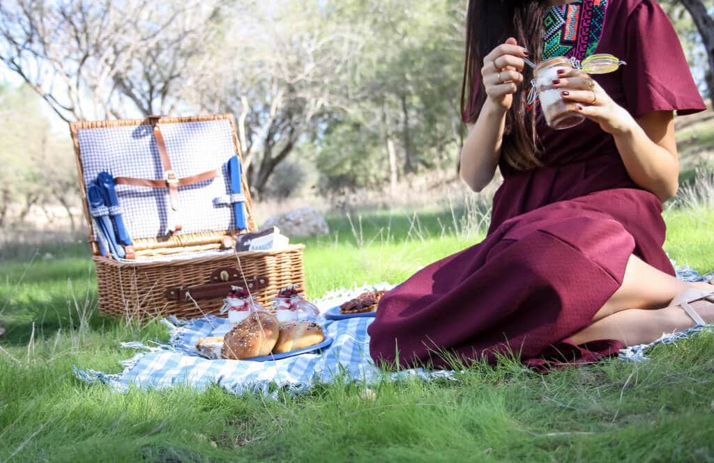 PICNIC IN THE MIDDLE OF WINTER EDITORIAL - RONI KANTOR DRESS dessert