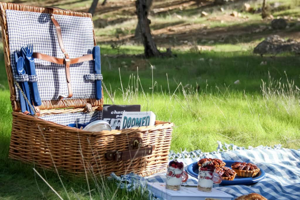 PICNIC IN THE MIDDLE OF WINTER EDITORIAL - RONI KANTOR DRESS cute picnic basket