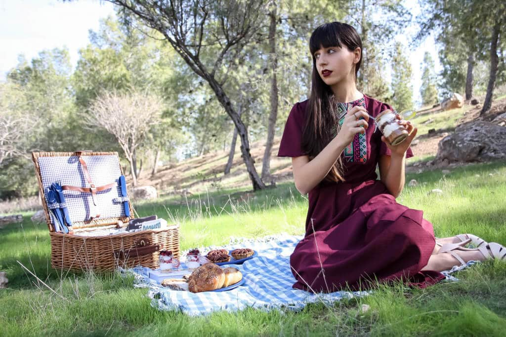PICNIC IN THE MIDDLE OF WINTER EDITORIAL - RONI KANTOR DRESS
