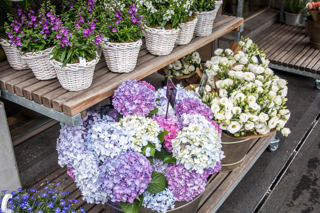 The Perfect Guide: How Maintain a Fresh Bouquet of Flowers Over Time ...