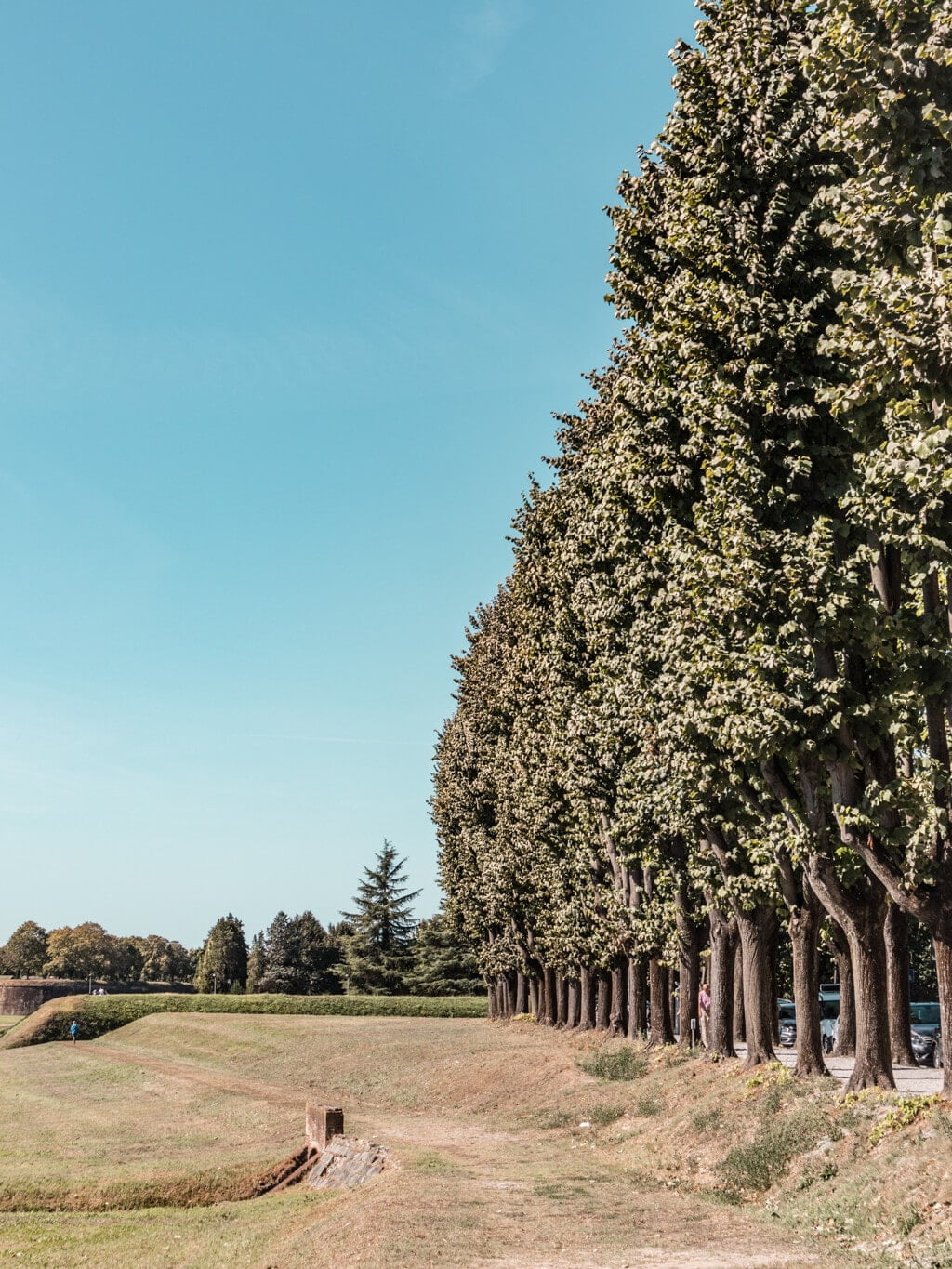 Lucca    A Guide For Planning A Trip To Tuscany, Italy - Things to do, including food & restaurants tips, wineries, and road trip tips