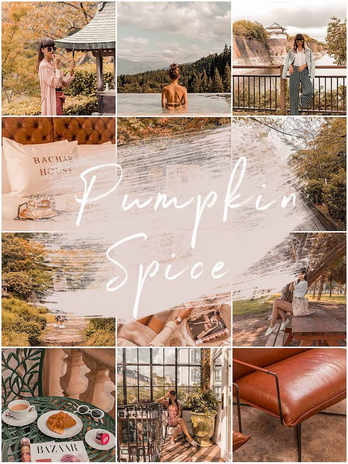 PUMPKIN SPICE lightroom preset 1
