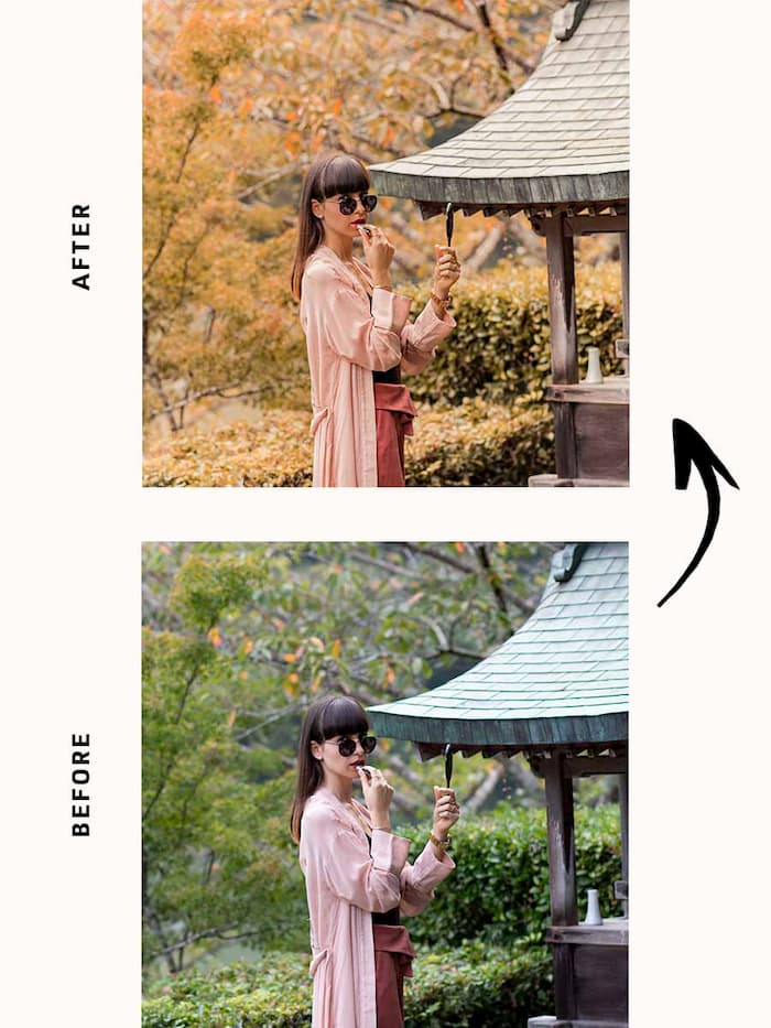 PUMPKIN SPICE lightroom preset 4